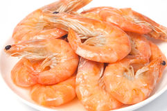 Prepared shrimps on plate Royalty Free Stock Photos
