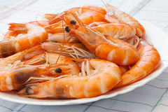 Prepared shrimps on the plate Stock Photo