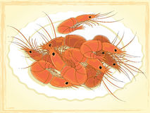 Prepared shrimps on the white plate. Stock Images