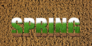 prepared soil with fresh grass images inside the word spring Stock Photography