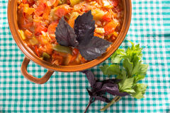 Prepared stew on a dishcloth Stock Photography
