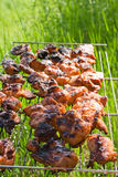 The prepared tasty meat in lattice Royalty Free Stock Photography