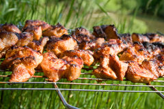 The prepared tasty meat in lattice Royalty Free Stock Image