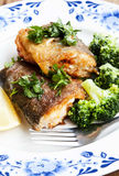 Prepared Trout with Broccoli Garnish Royalty Free Stock Image