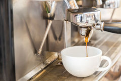 Prepares espresso Royalty Free Stock Photo