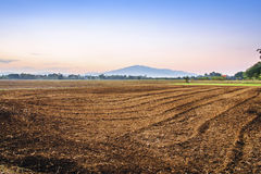 Prepari l'area di piantatura degli agricoltori del riso Fotografia Stock Libera da Diritti