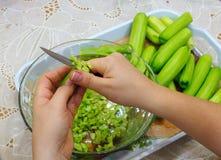 Prepari un'insalata immagine stock