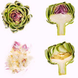 Preparing artichoke Royalty Free Stock Photo