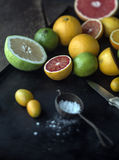 Preparing assorted citrus fruit for dessert Royalty Free Stock Image