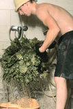 Preparing bath besom Royalty Free Stock Image