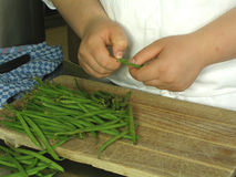 Preparing beans. Chef is preparing garden beans for meal stock photography