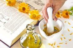 Preparing of calendula oil Stock Images