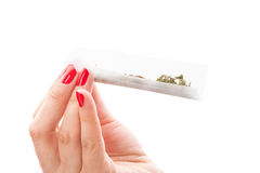 Preparing a cannabis joint. Royalty Free Stock Image