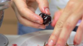Preparing cherry while cooking cheese cake stock footage