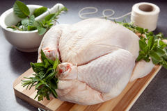 Preparing Chicken for Roasting royalty free stock images