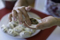 Preparing Chinese Dumplings 2. A close up of a Chinese ladies hands as she prepares traditional, handmade Chinese Dumplings using fresh ingredients royalty free stock photography