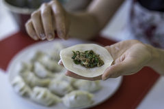 Preparing Chinese Dumplings 1. A close up of a Chinese ladies hands as she prepares traditional, handmade Chinese Dumplings using fresh ingredients Stock Image