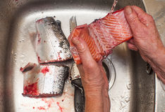 Preparing and cleaning salmon for cooking Stock Photos