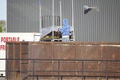 Preparing the Compost Stock Photo