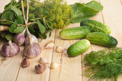 Preparing cucumbers for pickling Royalty Free Stock Photos