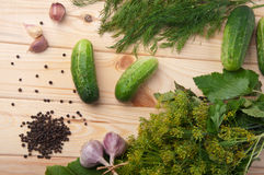 Preparing cucumbers for pickling Stock Photography