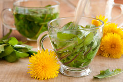 Preparing dandelion tea by pouring hot water over fresh dandelion leaves Stock Photos