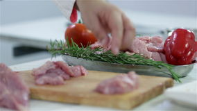 Preparing dish with turkey steaks. Professional butcher preparing fresh turkey meat for cooking dishes and freezing in refrigerator for later use. Wide shots and stock video