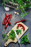 Preparing for dishes made of fresh spices and herbs Royalty Free Stock Images