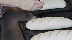 Preparing dough for baking breads. Full HD stock video