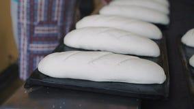 Preparing dough for baking breads in 4K.  stock video