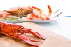 Preparing Dungeness Crab and Red Lobster Royalty Free Stock Photos