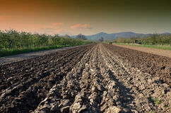 Preparing field for planting Royalty Free Stock Image