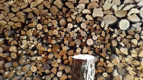 Preparing firewood,chopping wood with an ax.Slow motion stock video footage