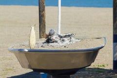 Preparing fish barbecue Stock Image