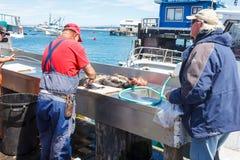 Preparing fish Stock Photo