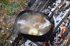 Preparing fish soup on the fire during the trip. Stock Images
