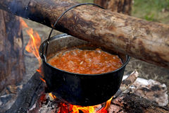 Preparing food on campfire. In wild camping Stock Images