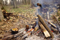 Preparing food on campfire in wild camping as. Preparing food on campfire in wild camping Stock Images