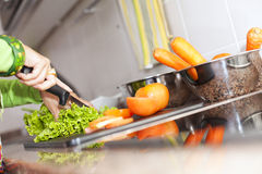 Preparing food at the kitchen. Hands preparing some healthy food at the kitchen (selective focus with shallow DOF royalty free stock image