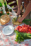Preparing food for picnic Royalty Free Stock Images