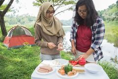 Preparing food with skewers during outing. Girls preparing food with skewers during camping in the wood near lake Stock Images