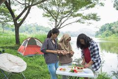 Preparing food with skewers during outing. Girls preparing food with skewers during outing in the wood Stock Images