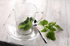 Preparing fresh nettle tea stock photo