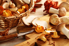 Preparing fresh oyster mushrooms in the kitchen stock images