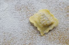 Preparing fresh ravioli. Stock Photography
