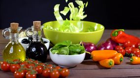 Preparing fresh vegetable salad. Slow motion stock video footage