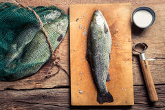 Preparing freshly caught dinner Stock Images
