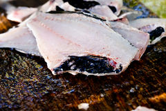 Preparing freshly caught fish - cleaning, butting & filleting Royalty Free Stock Images
