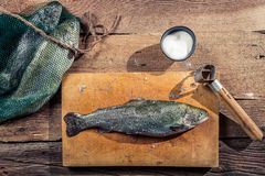 Preparing freshly caught fish from the lake Royalty Free Stock Photo