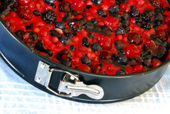 Preparing fruit cake in mold Stock Image
